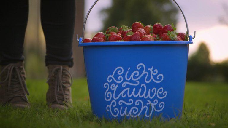 Herberg de Troost - Aardbeienblond